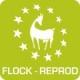 Logo FLOCK-REPROD