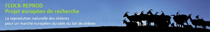 Bienvenue sur le site du projet européen FLOCK-REPROD